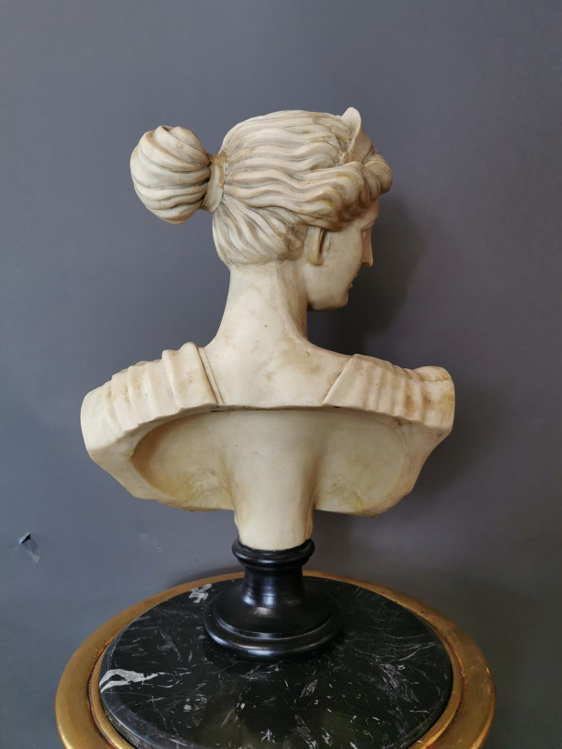 Resin bust of a Grecian Lady - Image 2 of 2