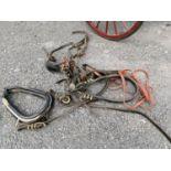 Set of hose harnesses.
