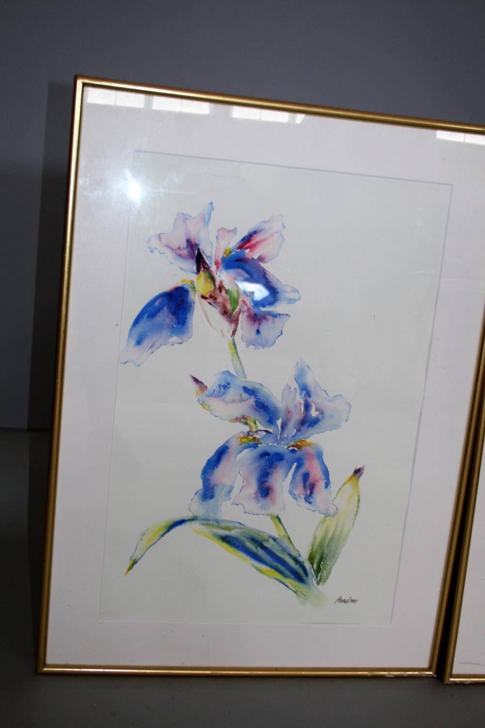 Ann Gover set of three water colours, featuring different flowers. 35W x 59H - Image 2 of 4
