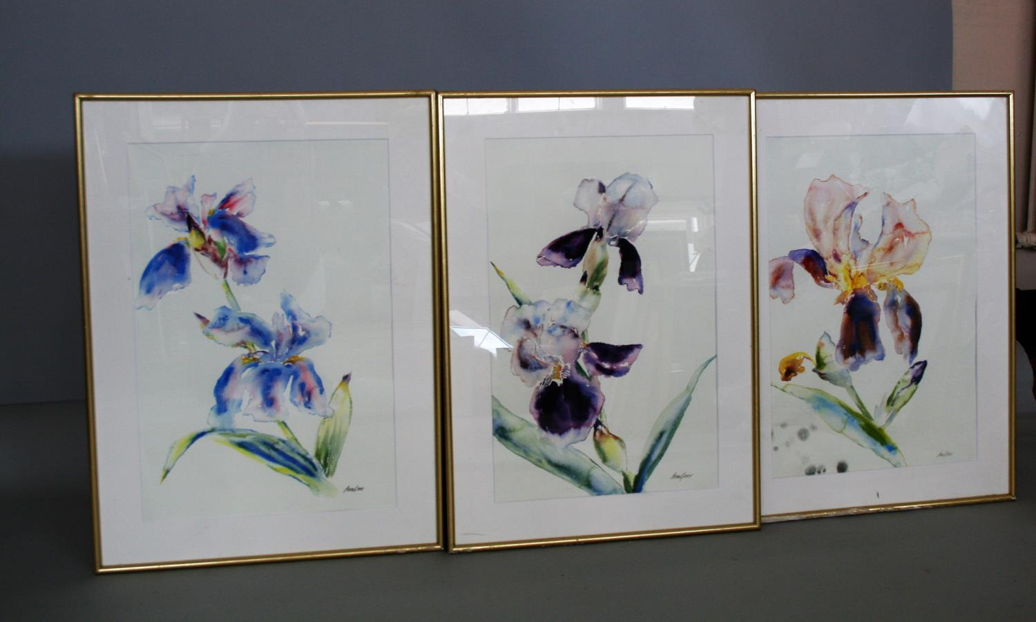 Ann Gover set of three water colours, featuring different flowers. 35W x 59H