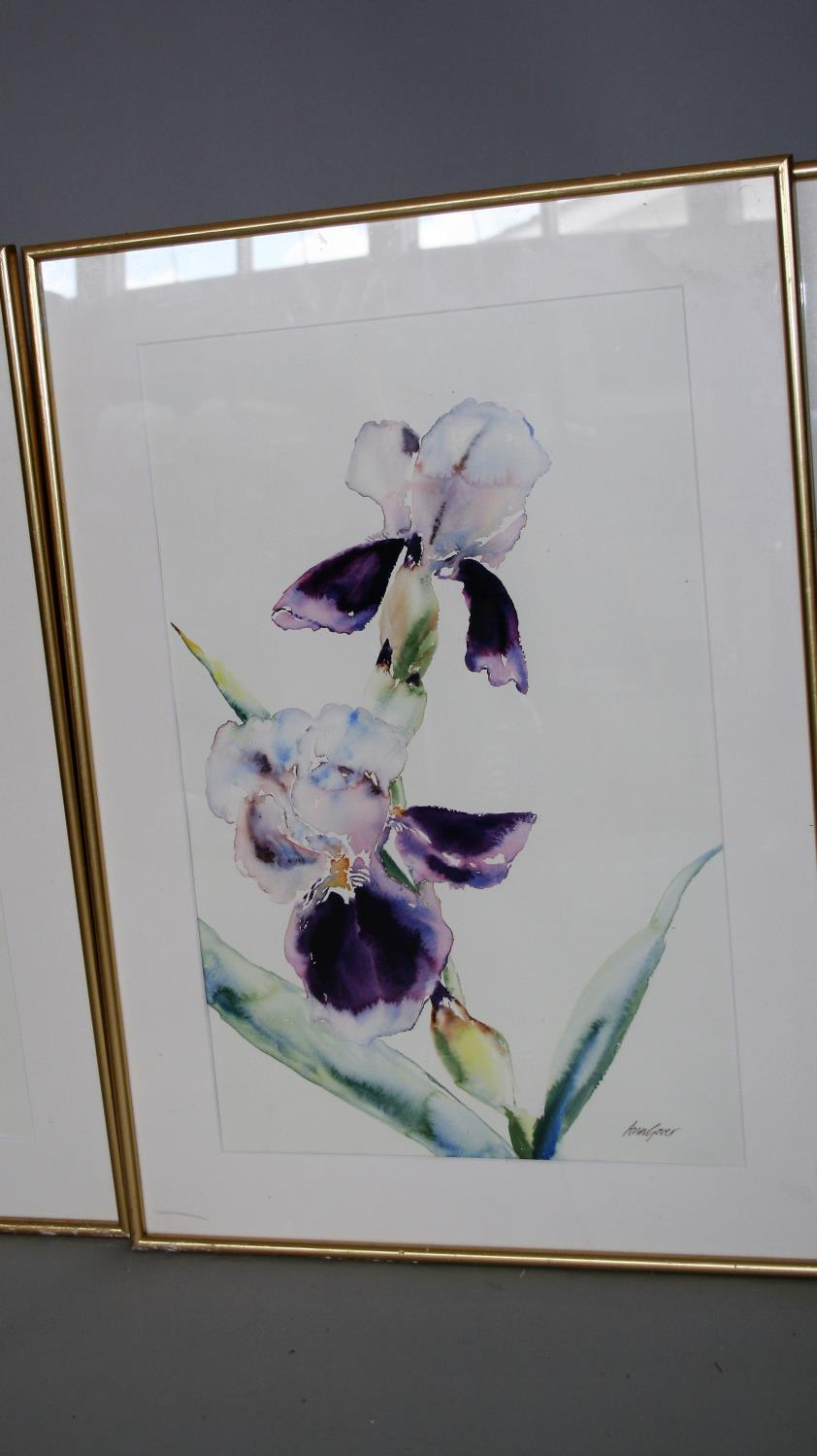 Ann Gover set of three water colours, featuring different flowers. 35W x 59H - Image 3 of 4