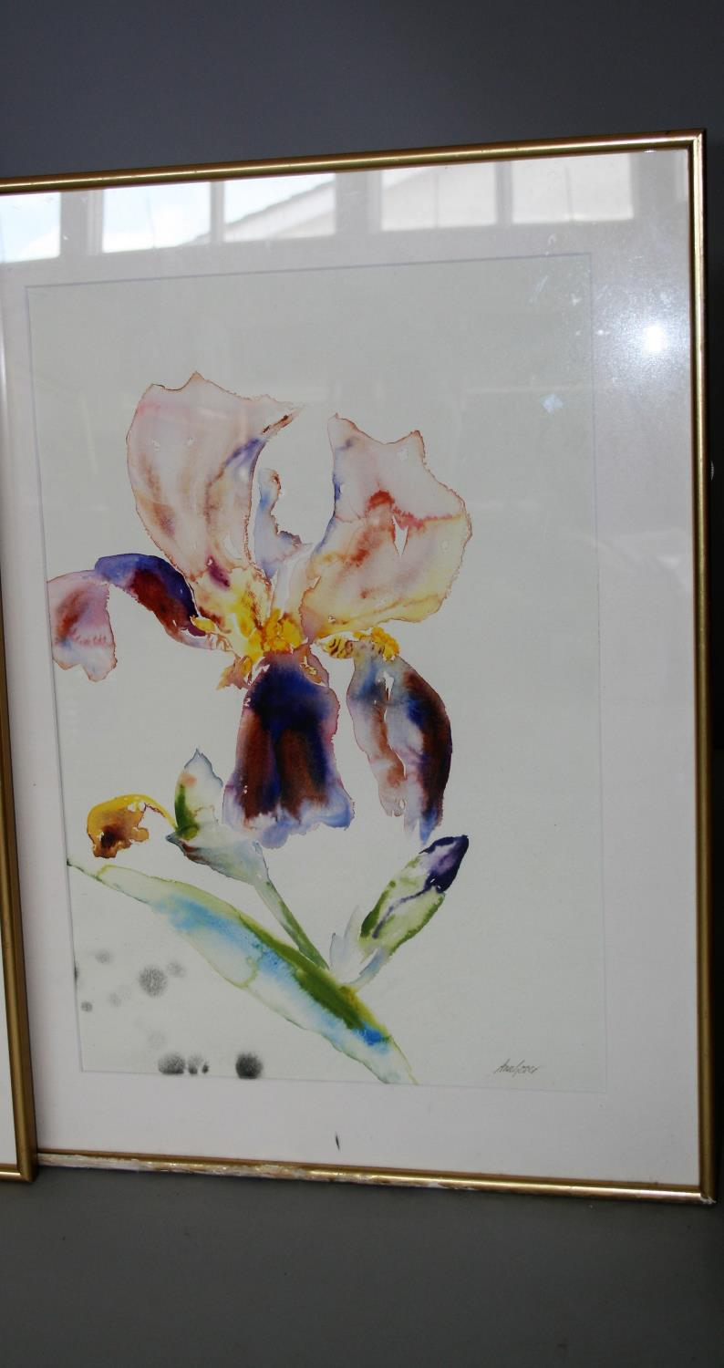 Ann Gover set of three water colours, featuring different flowers. 35W x 59H - Image 4 of 4