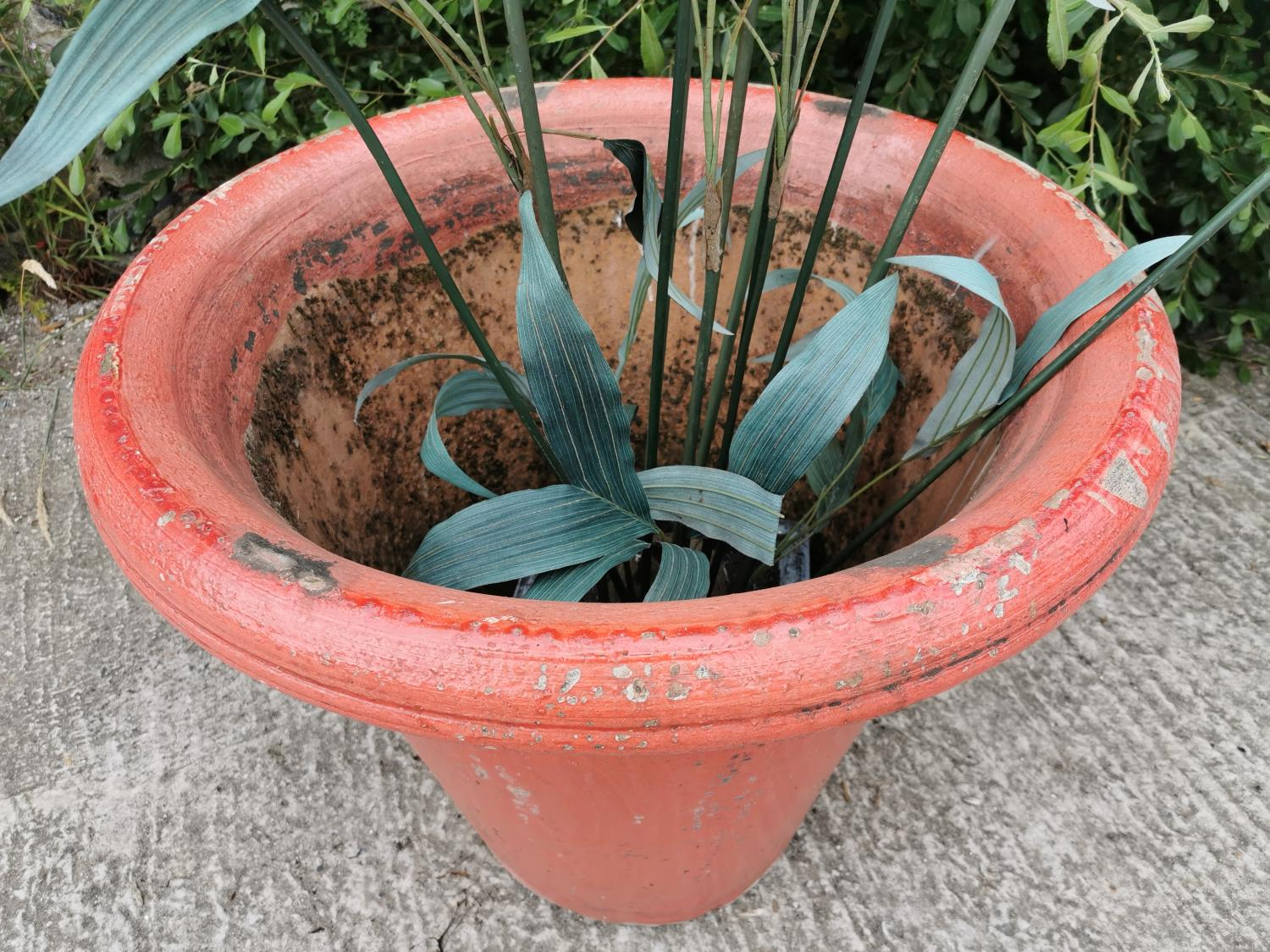 Good quality early 20th C. glazed terracotta planter. - Image 3 of 3