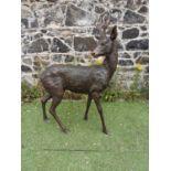 Good quality bronze model of a Deer.