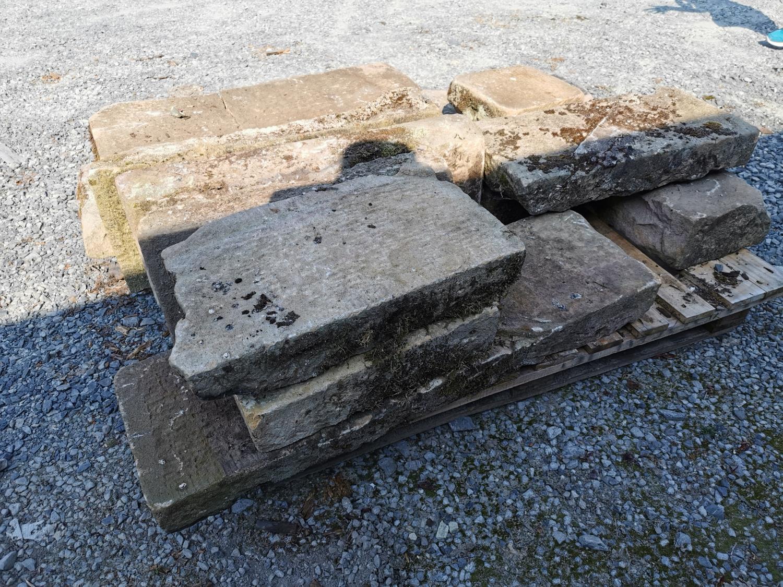Collection of twelve 19th C. sandstone steps - Image 2 of 2