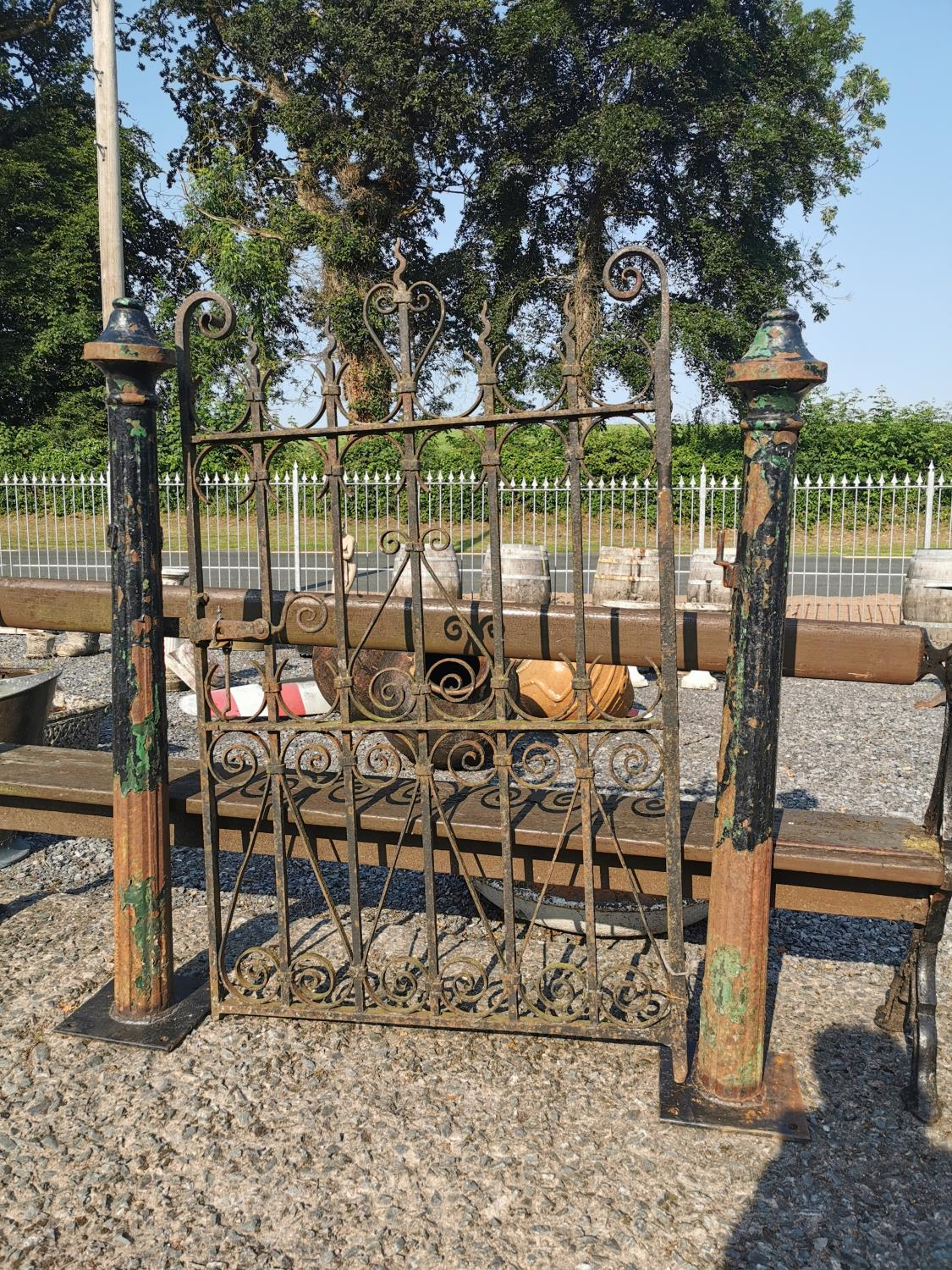 Cast iron garden gate and posts.