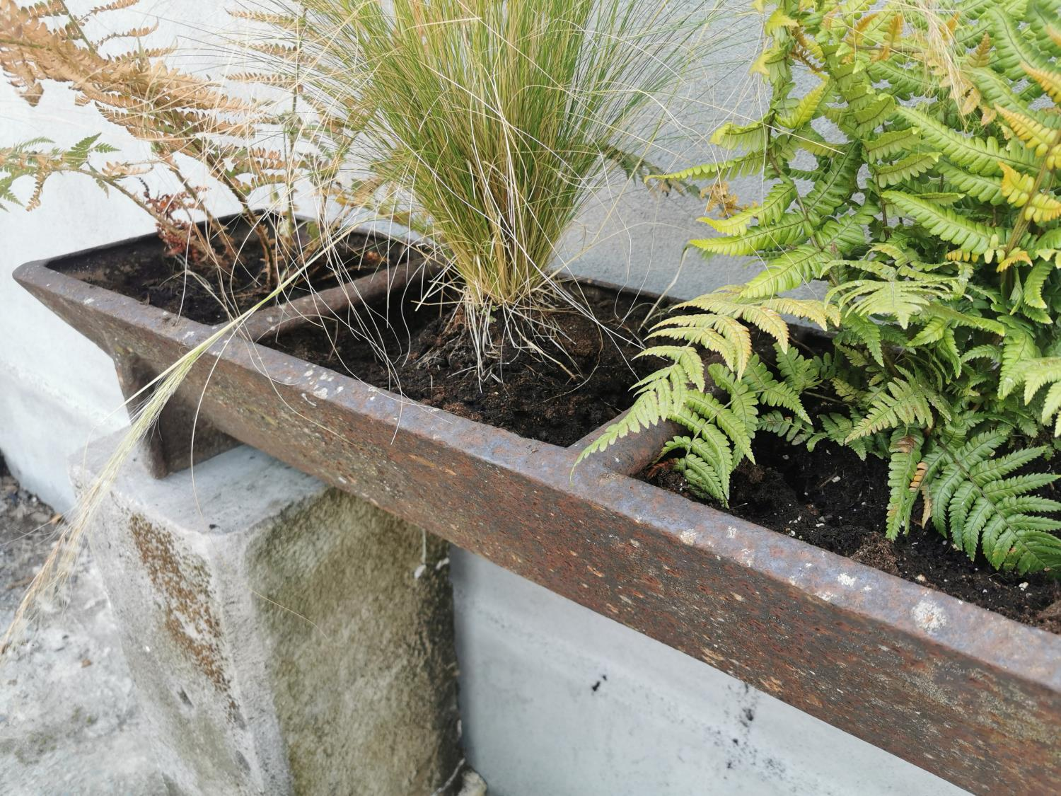 Early 20th C cast iron pig feeder/planter. - Image 3 of 4