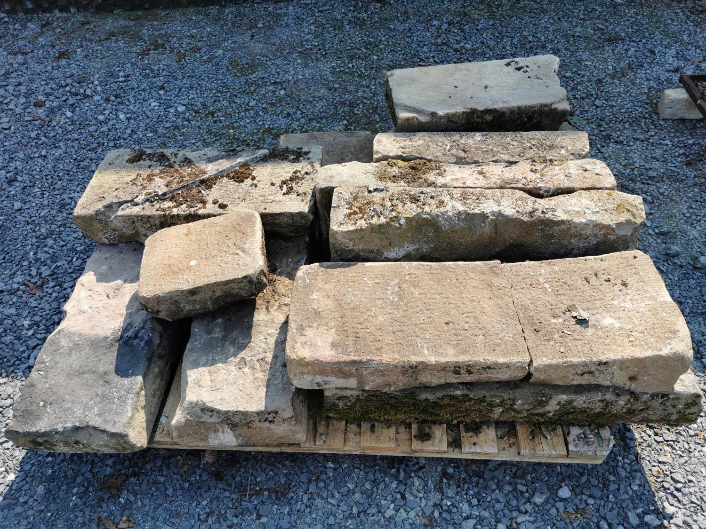 Collection of twelve 19th C. sandstone steps