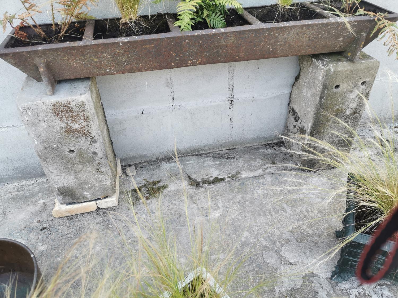 Two 19th C. sandstone pedestals