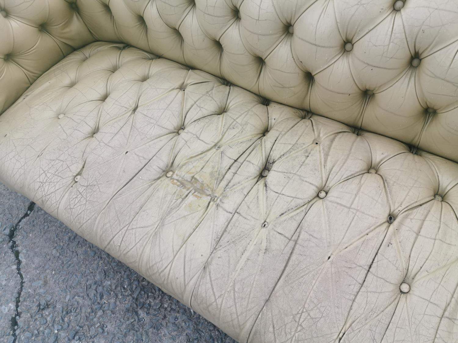 Pale green leather upholstered Chesterfield couch - Image 2 of 2