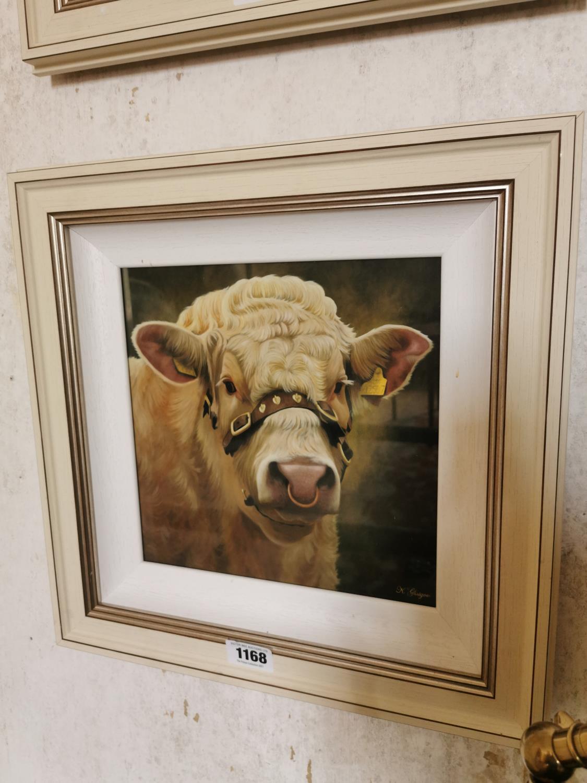 K Glasgow Bull Oil on Canvas