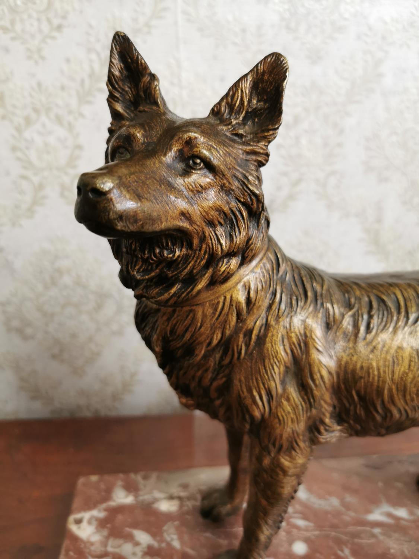Bronze model of an Alsatian Dog - Image 2 of 2