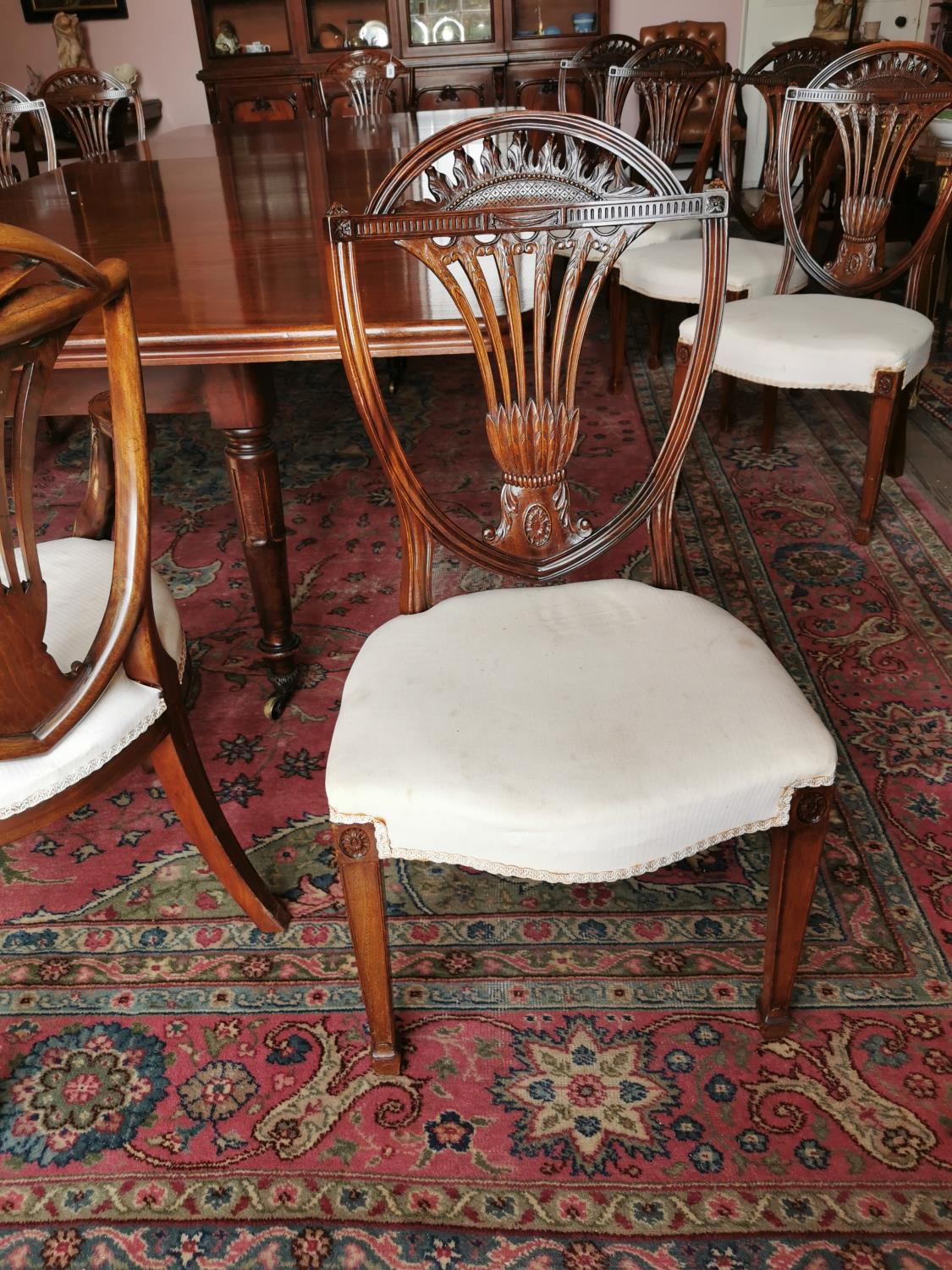 Set of ten plus two Edwardian mahogany dining chairs. - Image 5 of 6