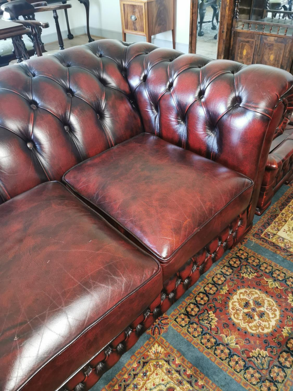 Ox blood leather Chesterfield sofa. - Image 3 of 3