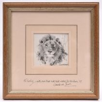 An original David Shepherd pencil sketch on paper of a lion's face directly face on. Signed in the