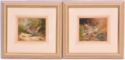 Christopher Hughes, 2x watercolours of woodcock. Both signed in the bottom right corner. Approx