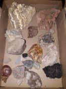 Box of rock samples