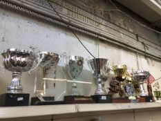Approx 17 various motorcycling trophies