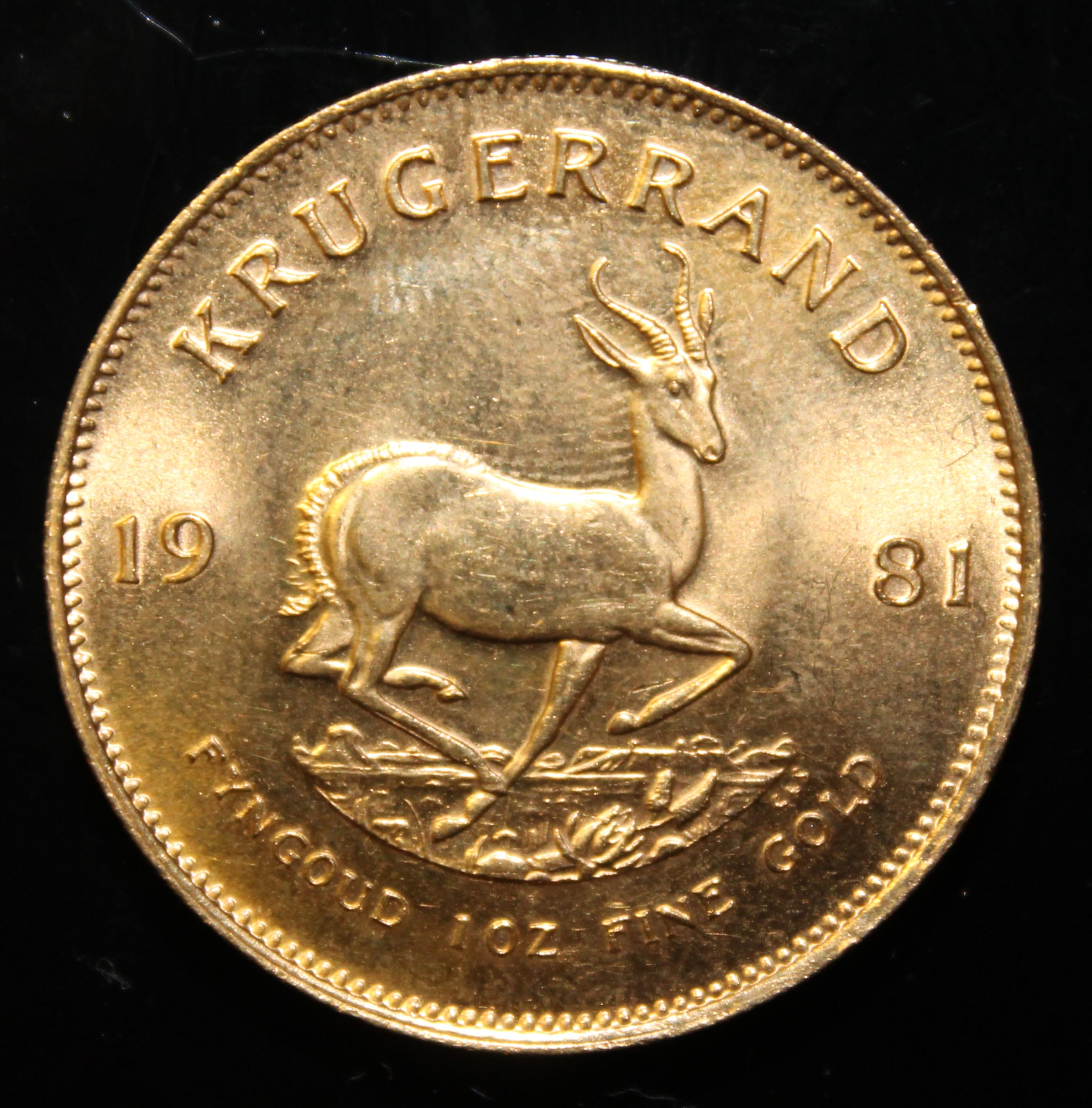 South Africa, 1981 Krugerrand, 1 oz. fine gold (91.67%) ONLY 10% BUYER'S PREMIUM (INCLUSIVE OF - Image 2 of 2