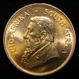South Africa, 1982 Krugerrand, 1 oz. fine gold (91.67%) ONLY 10% BUYER'S PREMIUM (INCLUSIVE OF