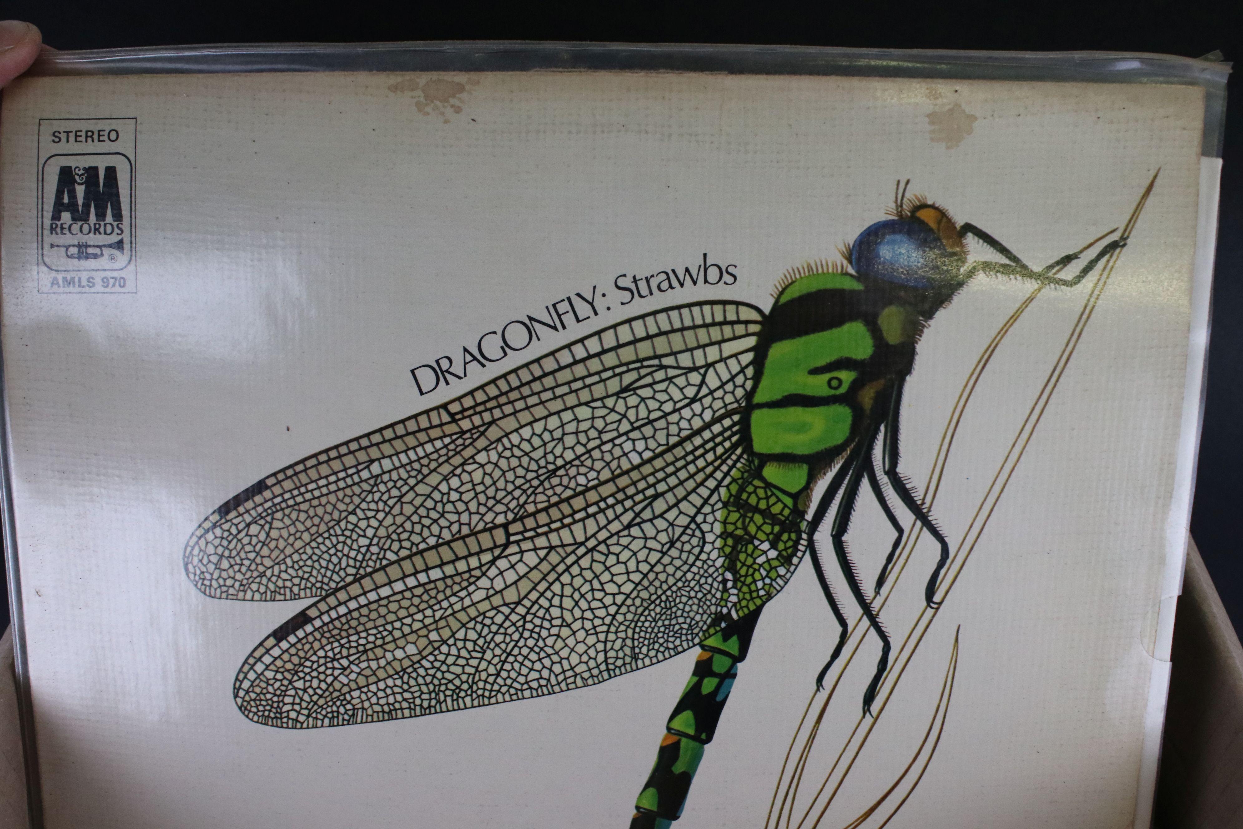 Vinyl - Around 30 Folk LPs to include The Strawbs, Pentangle, Richard & Linda Thompson, Fairport - Image 3 of 11