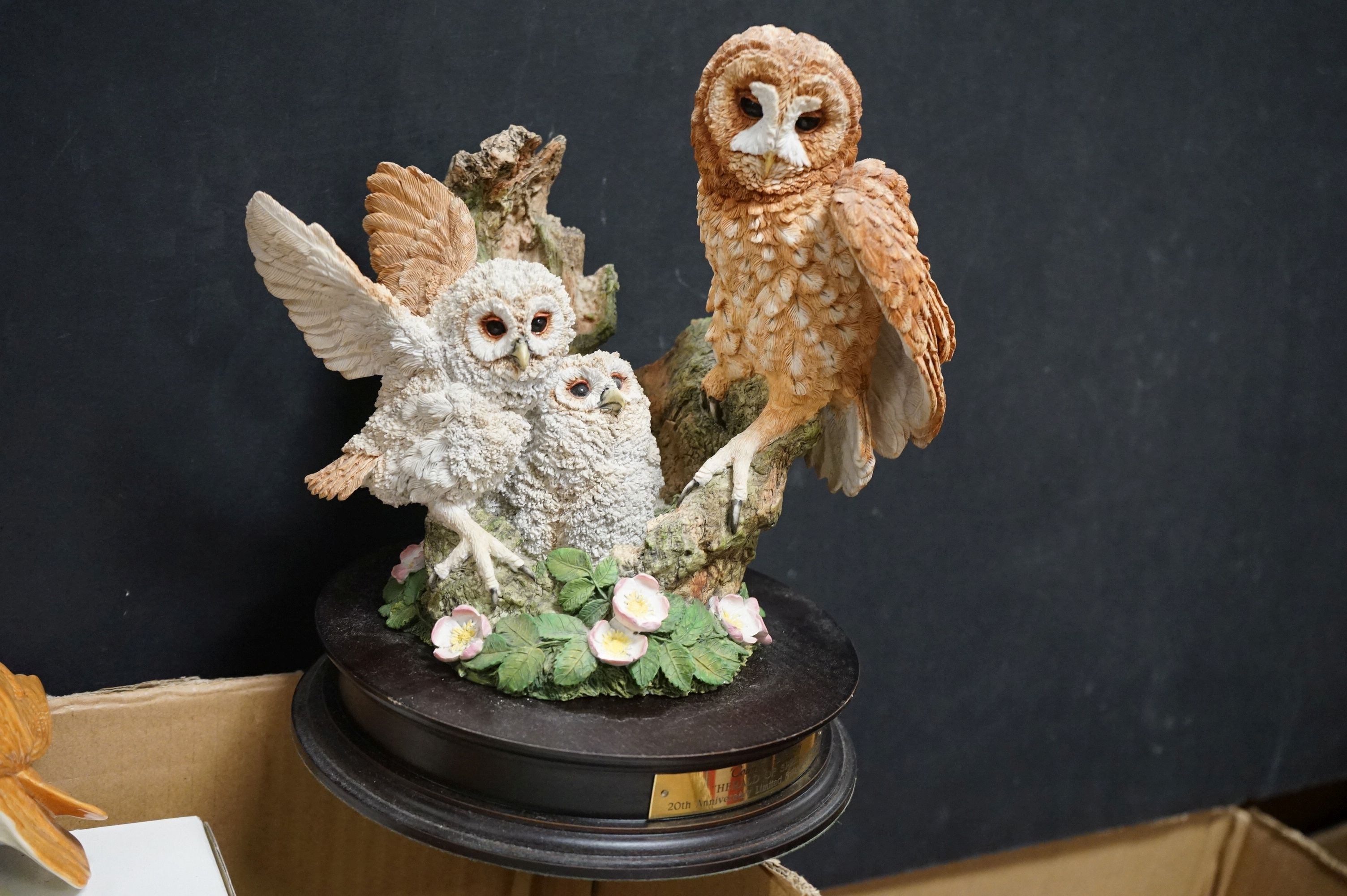 A very large collection of boxed and loose owl ornaments to include the Leonardo Collection and a - Image 3 of 8