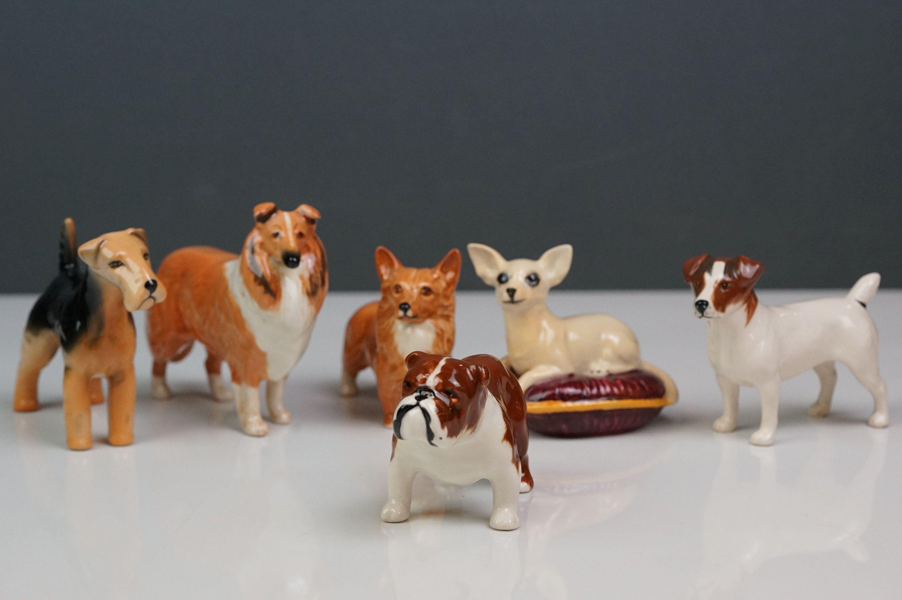 Six Beswick dogs: Bulldog Bosun small, model no. 1731; Corgi small, model no. 1736; Collie small,