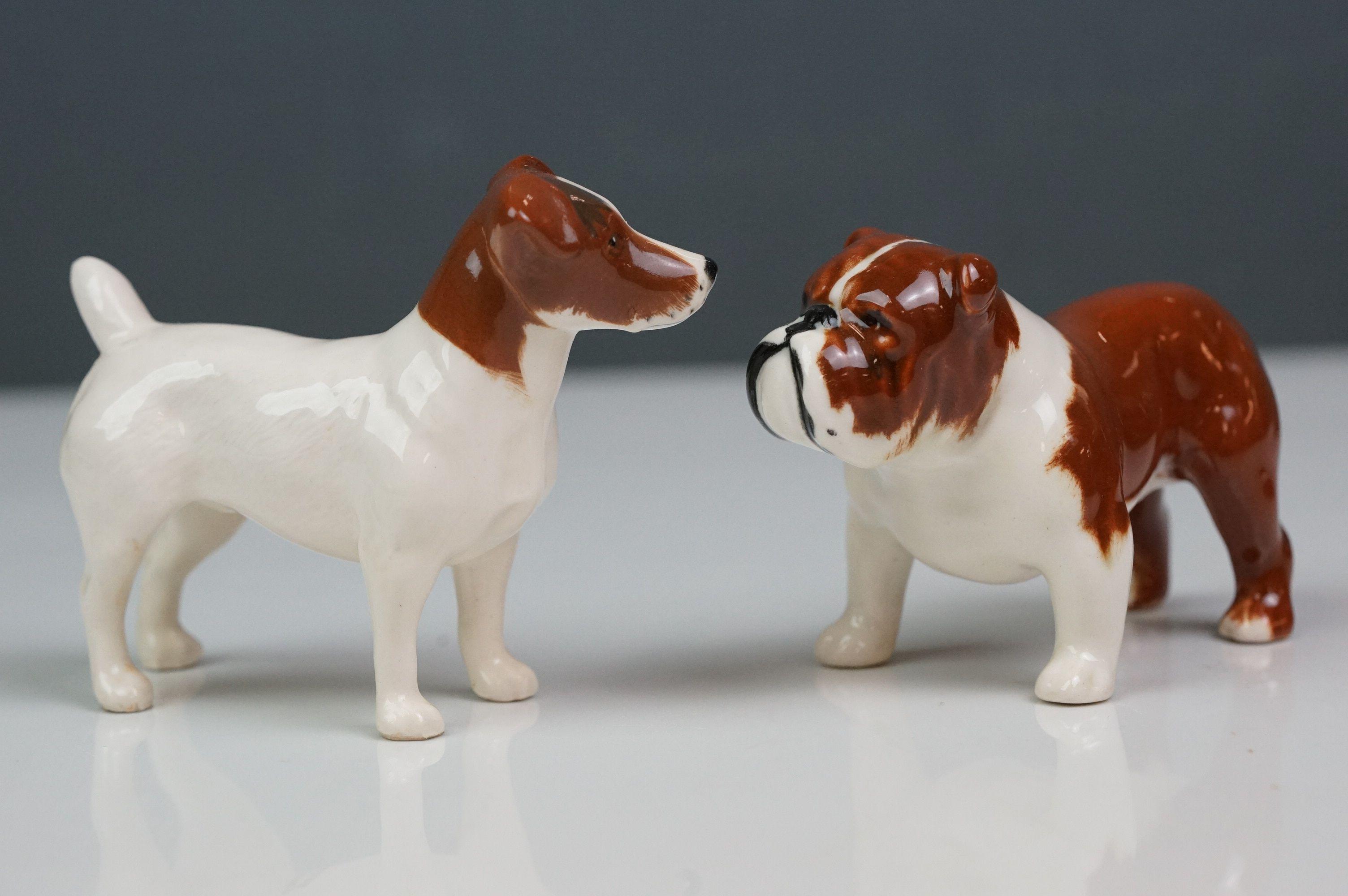Six Beswick dogs: Bulldog Bosun small, model no. 1731; Corgi small, model no. 1736; Collie small, - Image 10 of 12