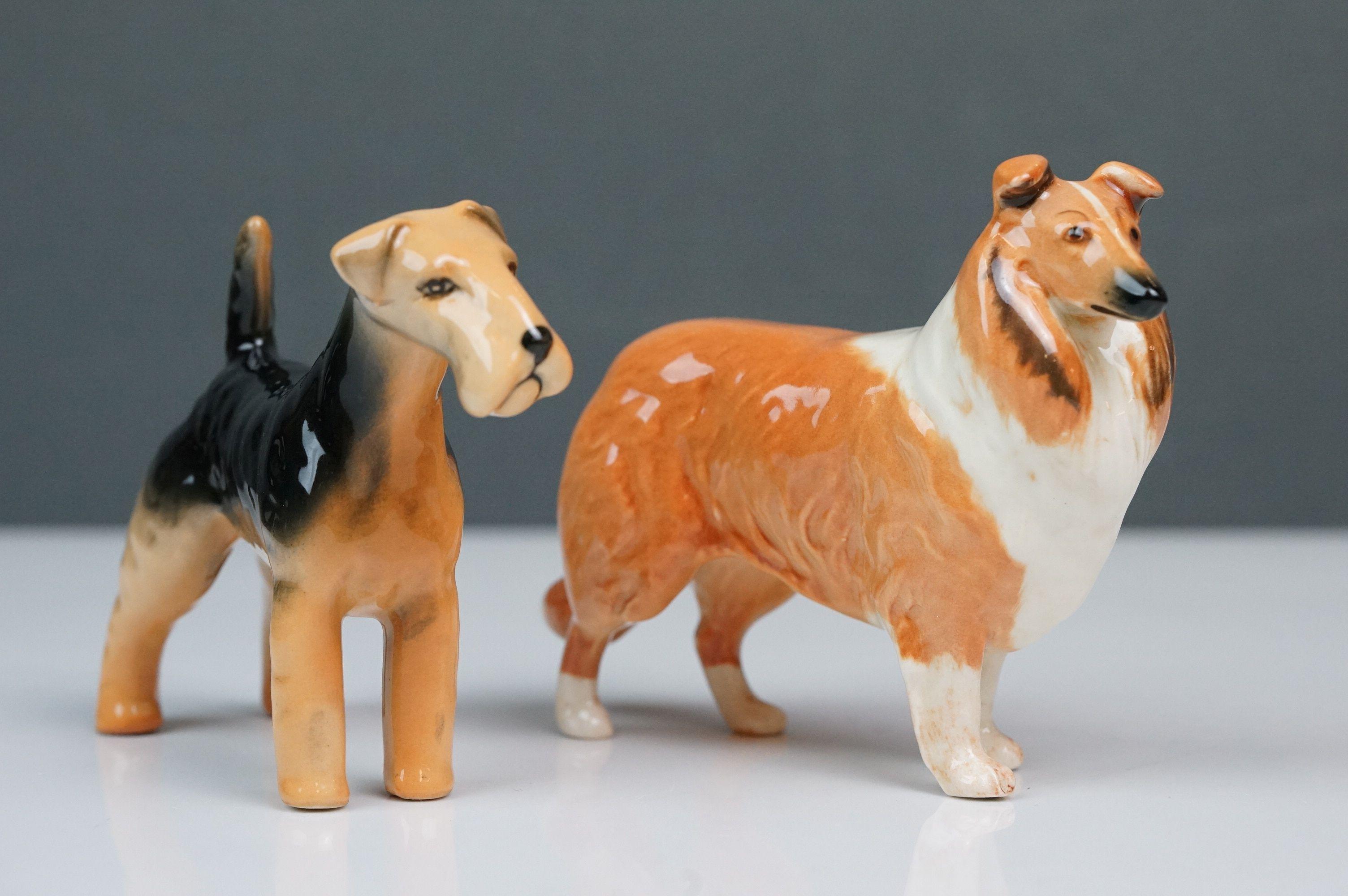 Six Beswick dogs: Bulldog Bosun small, model no. 1731; Corgi small, model no. 1736; Collie small, - Image 2 of 12