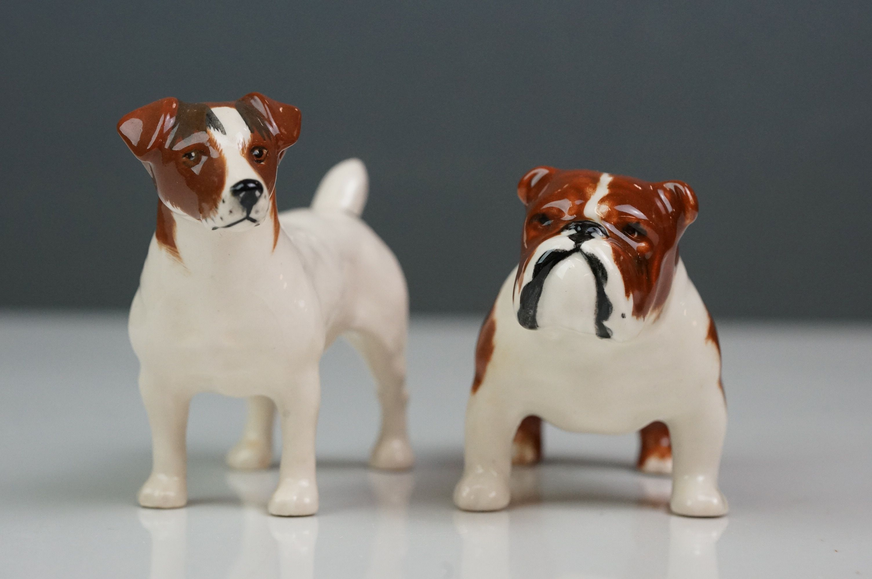 Six Beswick dogs: Bulldog Bosun small, model no. 1731; Corgi small, model no. 1736; Collie small, - Image 9 of 12