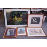 Five Pictures - Rodger McPhail (British 1953 ..) Signed Limited Edition Print of Grouse, no. 276/