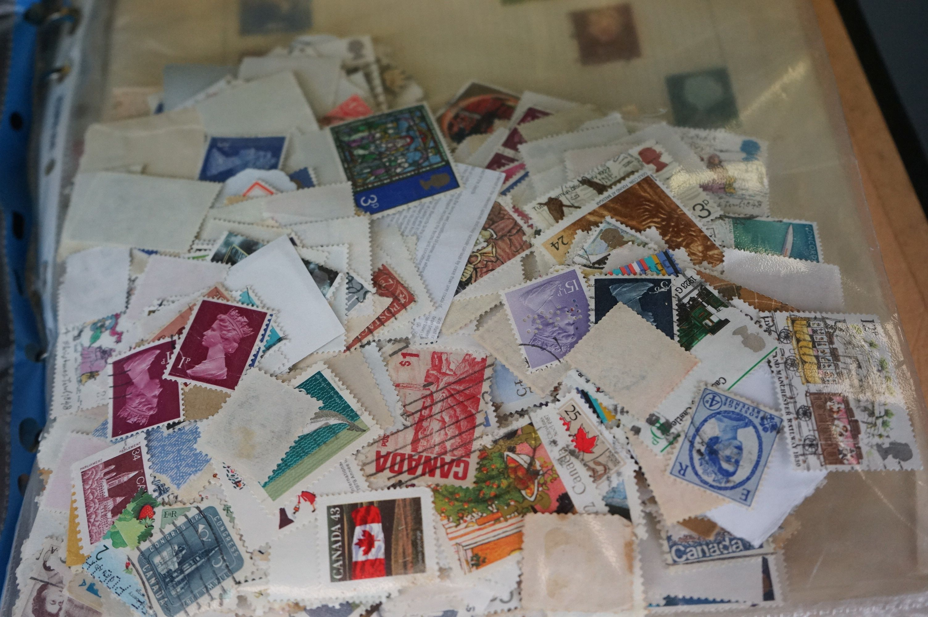 A large collection of British, Commonwealth and world stamps contained within albums. - Image 6 of 7