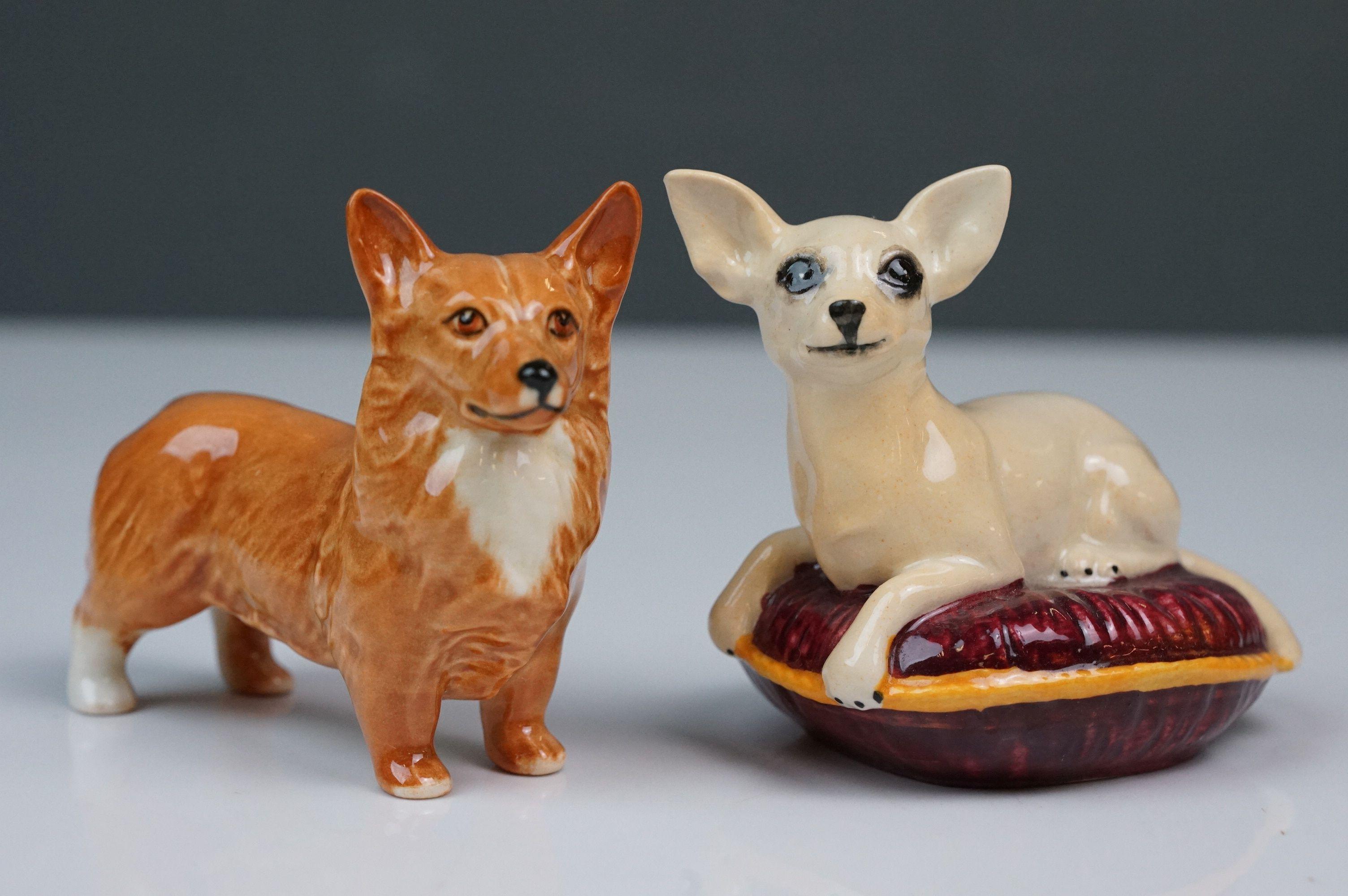 Six Beswick dogs: Bulldog Bosun small, model no. 1731; Corgi small, model no. 1736; Collie small, - Image 6 of 12