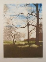 Christopher PENNY (British 1945-2001)Woodland, Lithograph, Signed and titled artists proof, blind-