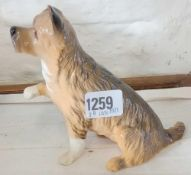 Royal Doulton terrier with paw outstretched. 5.5 in high