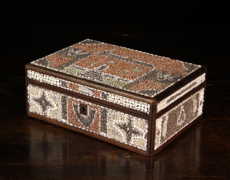 A 19th Century Shell Encrusted Folk-art Box. - Image 3 of 4