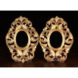 A Pair of Small 19th century Florentine Style Open Carved Picture Frames.