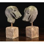 A Pair of Architectural Stone Fragments carved as Serpent's Heads and mounted on square wooden
