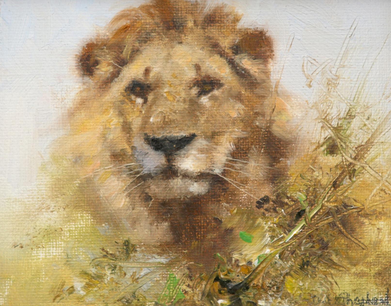 ‡David Shepherd CBE, FRSA (1931-2017) Lion Signed Da**Shepherd (lower right); signed and dated