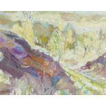 ‡Michael Paul Rainsford (Irish Contemporary) Birches, Farnhill Signed with initials M.R. (lower