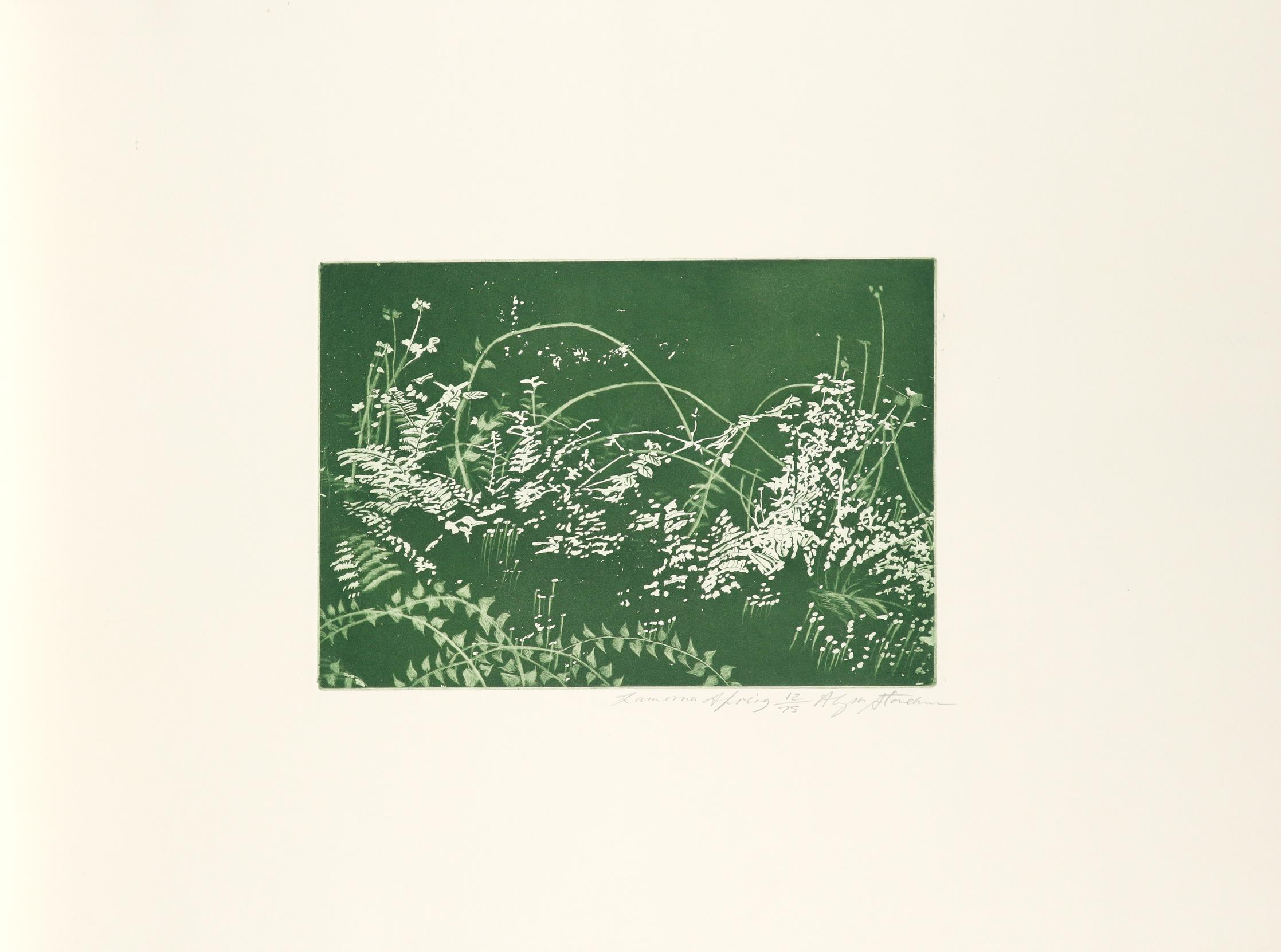 ‡Penwith Society of Arts Penwith Print Room Portfolio: A Spring Collection 10 prints plus title - Image 27 of 30