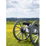 A 19th century cannon mounted on a superb replica field carriage, barrel 26.5 in. and with bore of