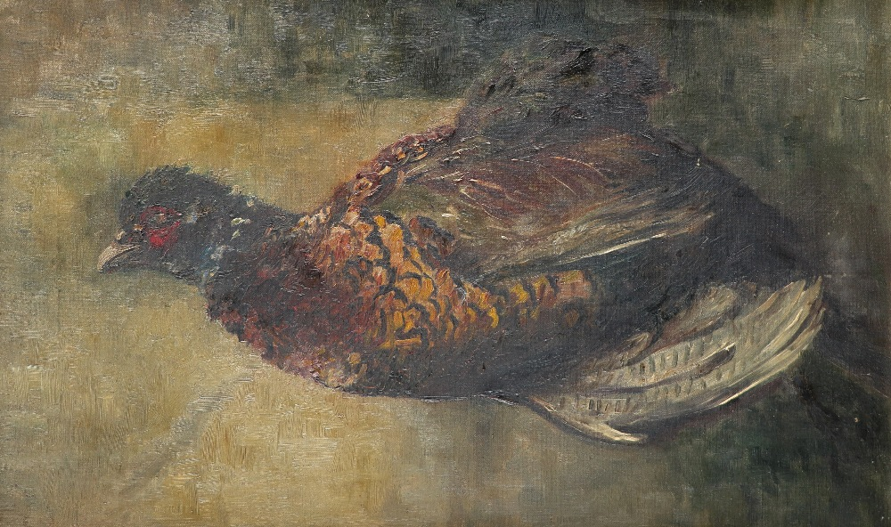 Jacques-Émile Blanche (French 1861-1942) Study of a pheasant Oil on canvas 35.6 x 53.5cm; 14 x