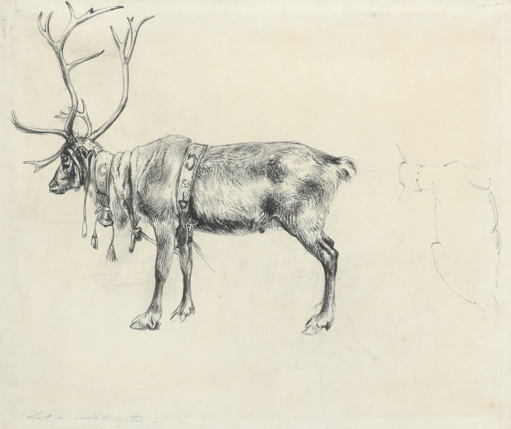 Alfred William Strutt (1856-1924) Study of stags rutting; Study of a reindeer Two, the latter - Image 4 of 6
