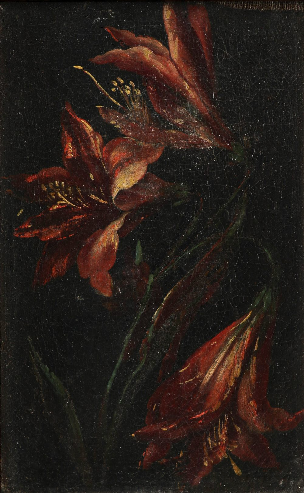 Dutch School 18th Century Study of lillies; Study of peonies A pair, both oil on canvas Each 26 x