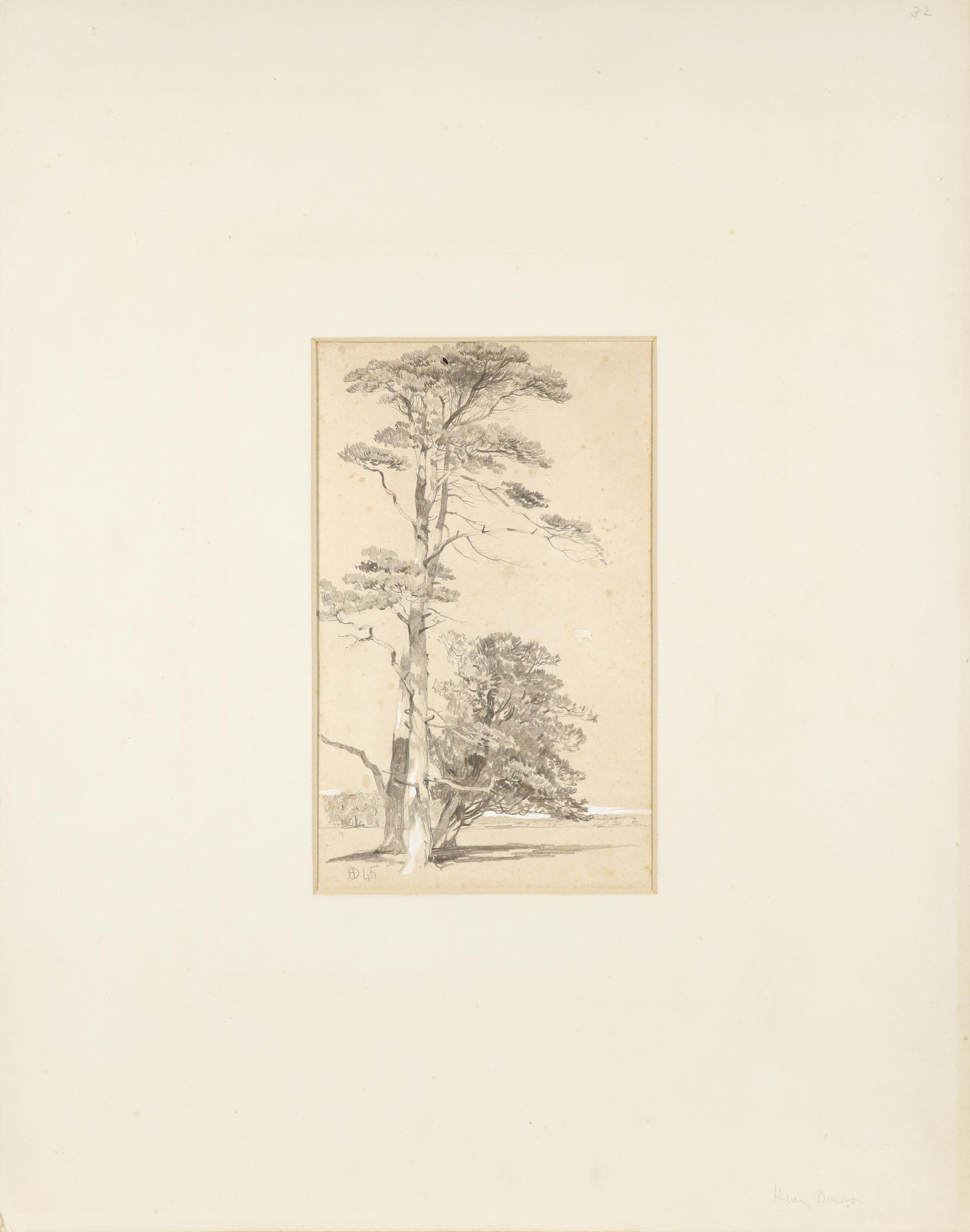 Henry Dawson (1811-1878) Study of conifers Signed with monogram and dated 45 (lower left) Pencil - Image 2 of 3