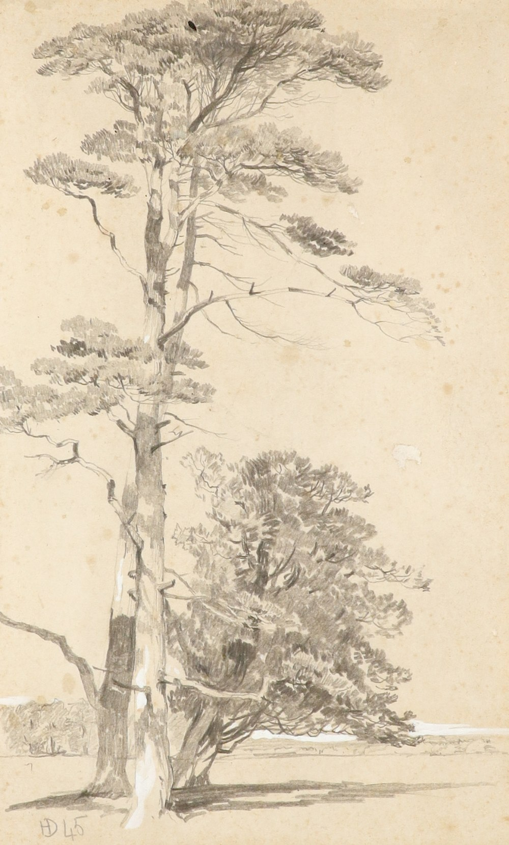 Henry Dawson (1811-1878) Study of conifers Signed with monogram and dated 45 (lower left) Pencil