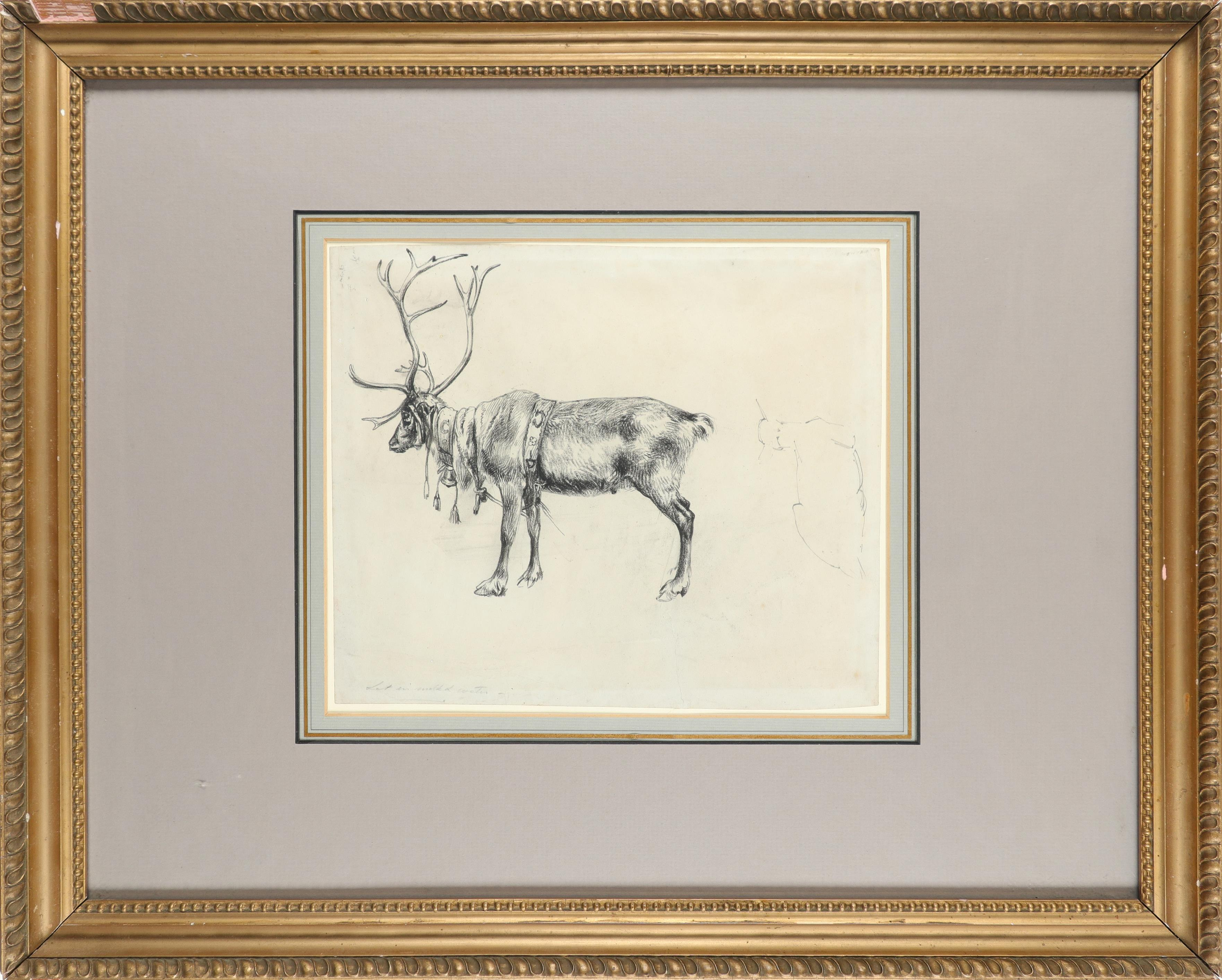 Alfred William Strutt (1856-1924) Study of stags rutting; Study of a reindeer Two, the latter - Image 5 of 6