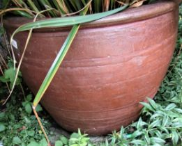 A good salt glazed oviform pot, 54cm high x 60cm diameter