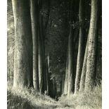 MAN RAY - La forêt - Original vintage photogravure